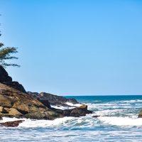 Summer Surf Brazil Florianopolis
